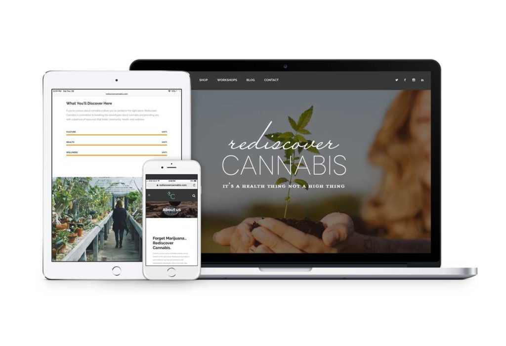 Rediscover Cannabis Branding and website created by Brand + Bash